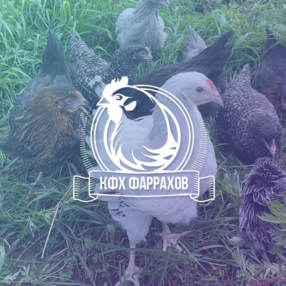 создание сайта для Крестьянского Фермерского хозяйства